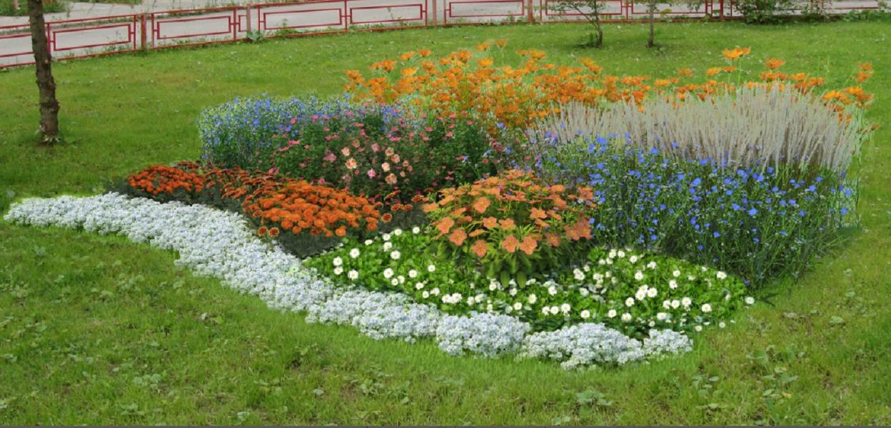 Семена выкройки для клумбы Красота Садовая 1 Васильково-оранжевая клумба Красота Садовая