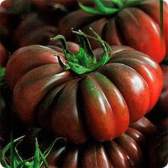 Семена Томат Пурпурный сахарный, 15 шт, Дом семян