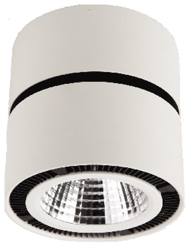Потолочный светодиодный светильник Lightstar Forte Muro 214830 фото