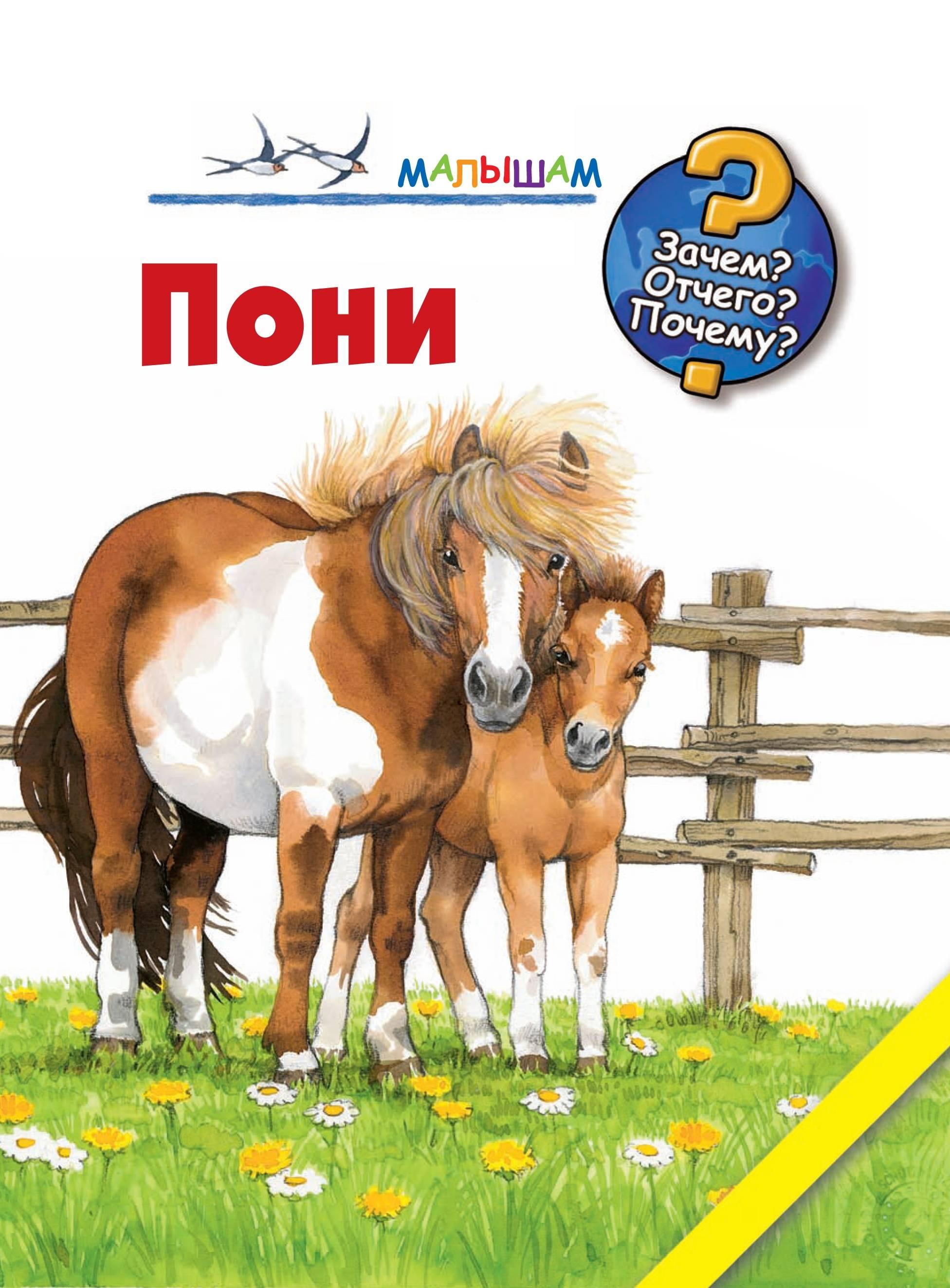 Книга пони