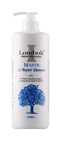 Шампунь Gain Cosmetics Lombok Mastic A3 Shampoo 1,5 л фото