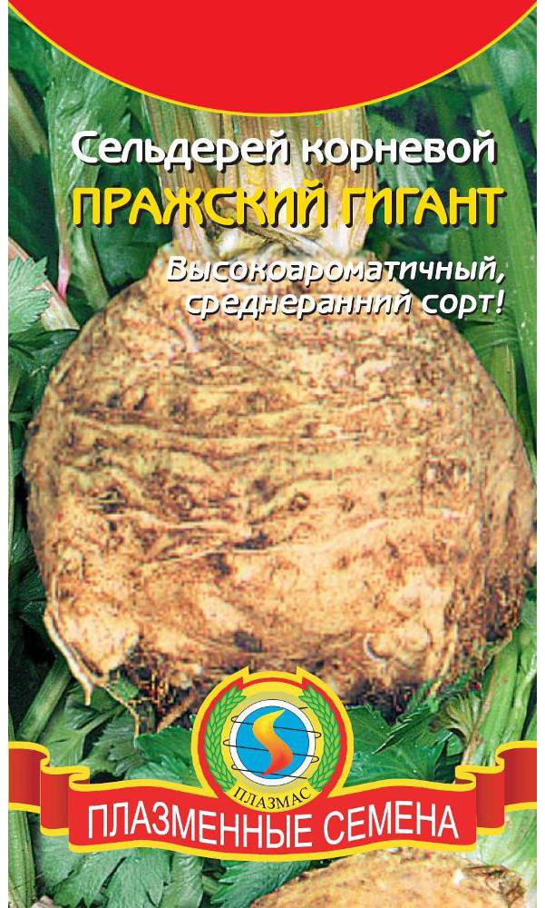 Семена Сельдерей корневой Пражский гигант, 0,45 г, Плазмас