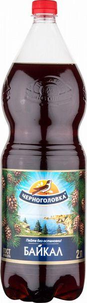 Напиток байкал Напитки из Черноголовки сильногазированный безалкогольный 2 л фото