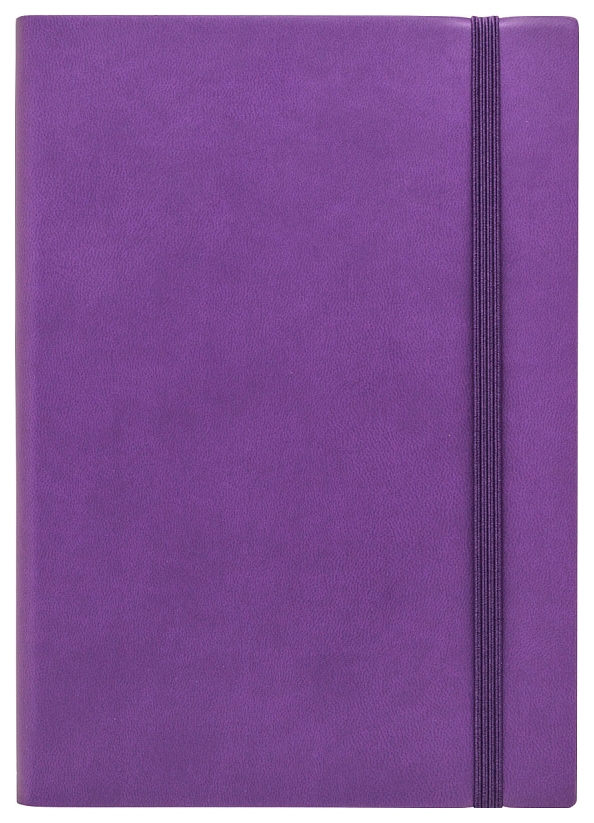 Ежедневник датированный на 2020 год Spectrum, А5, 168 листов, линия, фиолетовый