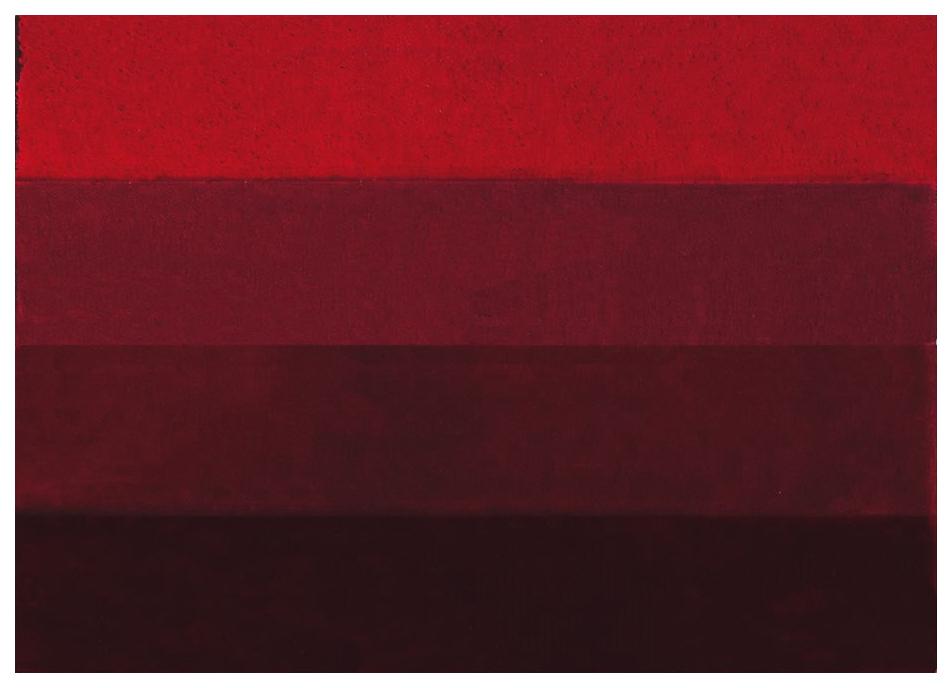 Коврик для ванной Spirella Four Красный