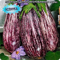 Семена Баклажан Заморский полосатик, 0,3 г, АЭЛИТА