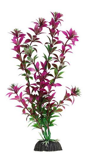 Растение аквариумное Ротала сиреневая, 40 см