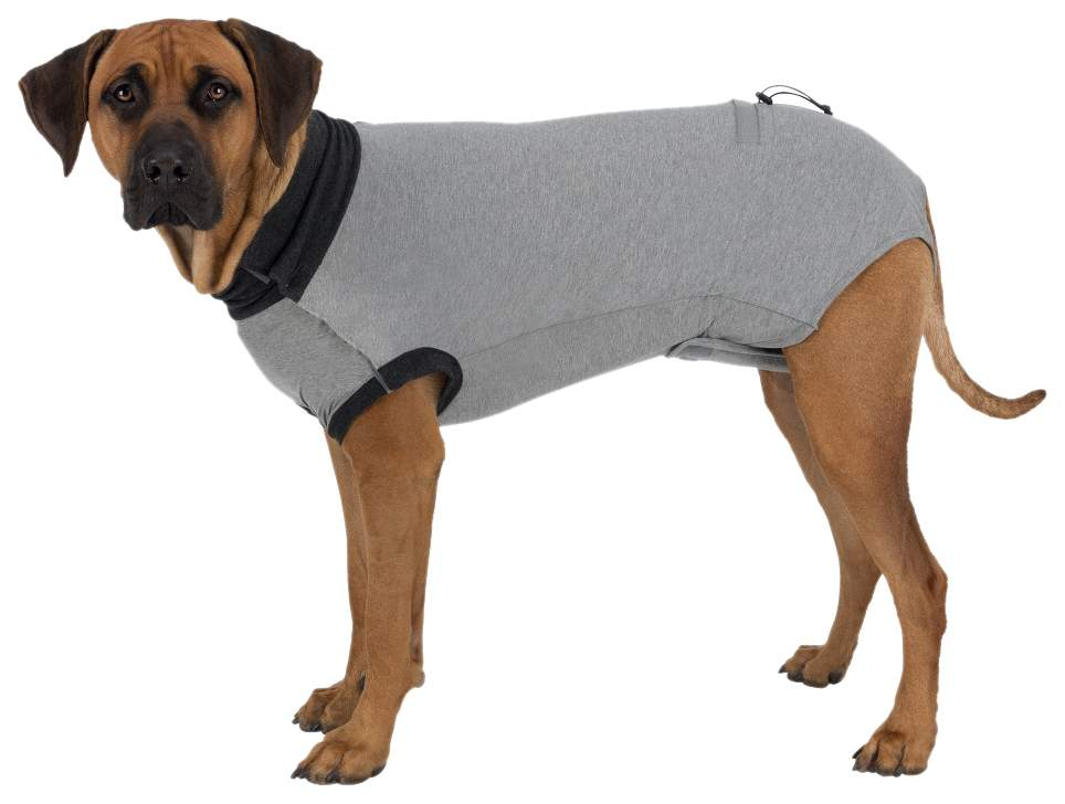 Попона для собак TRIXIE размер L унисекс, серый, длина спины 45 см