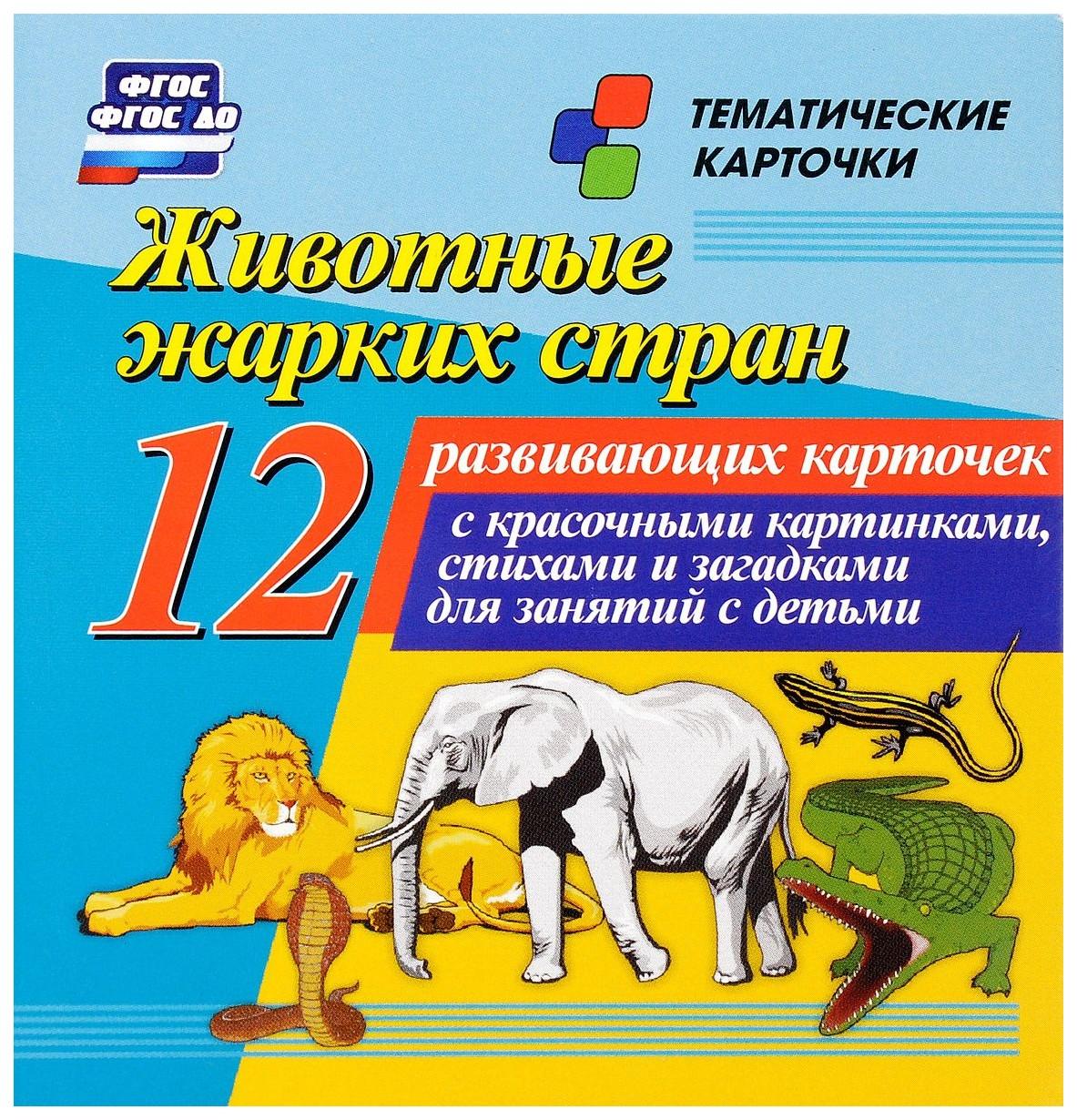 Купить Животные жарких стран: 12 развивающих карточек с красочными картинками, стихами и загадкам, Учитель, Подготовка к школе