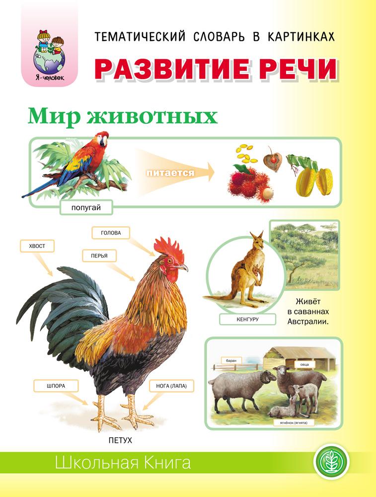 Купить Дурова и В. развитие Речи Мир Животных, Школьная книга, Развитие речи
