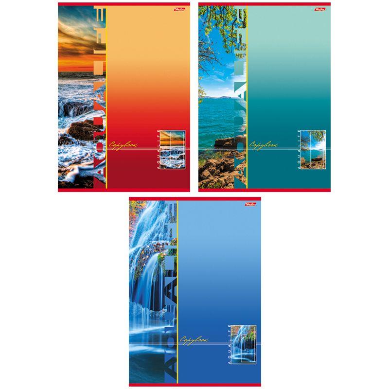 Тетрадь HATBER 80Т4влС3, T01363, 80 л., А4, клетка, выборочный лак, \