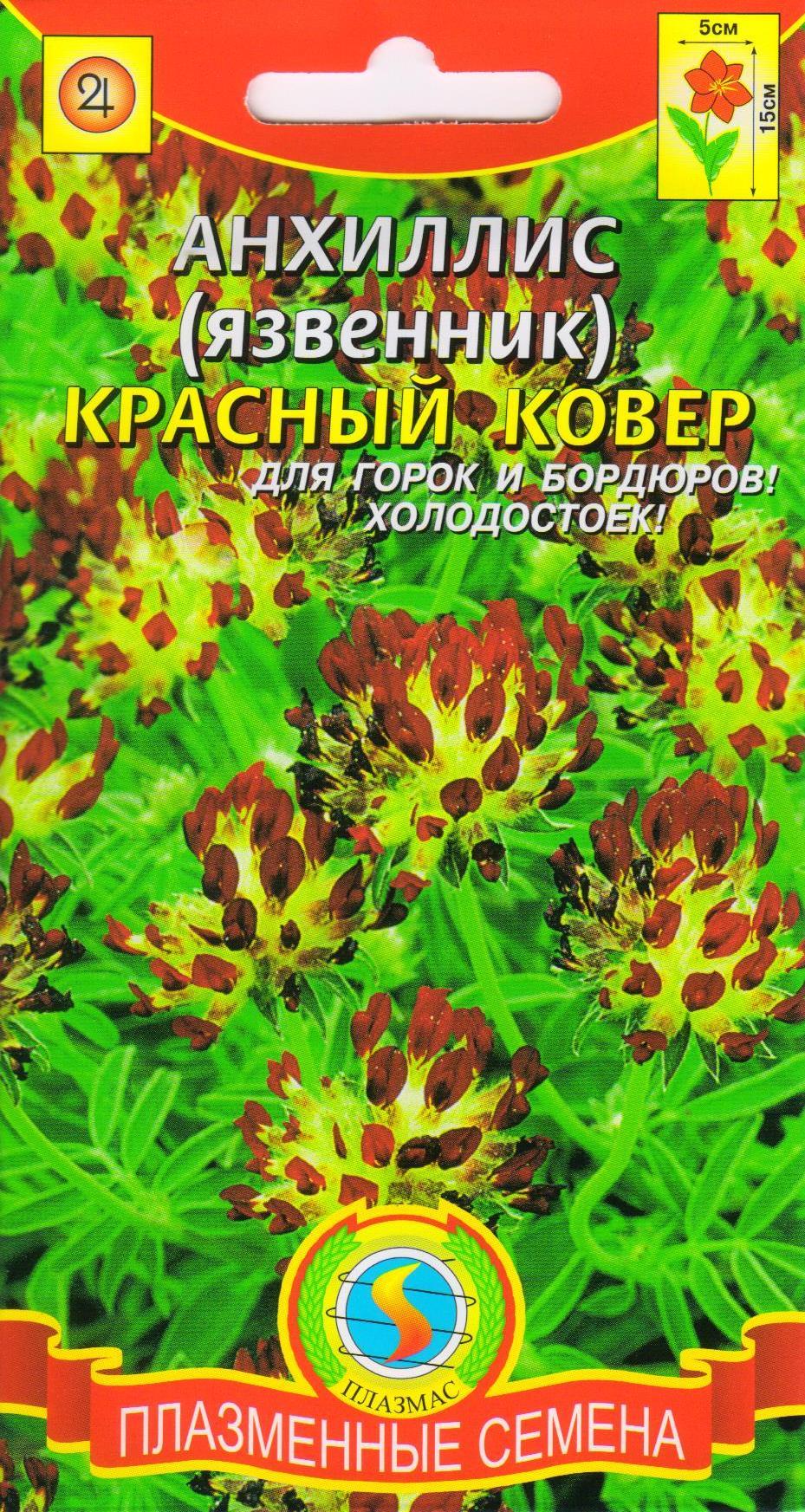 Семена Анхиллис (язвенник) Красный ковер, 0,02 г Плазмас