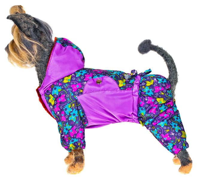 Комбинезон для собак Happy Puppy женский разноцветный M.