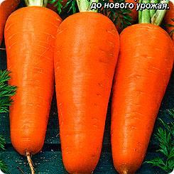 Семена Морковь Апельсинка, 2 г, АЭЛИТА