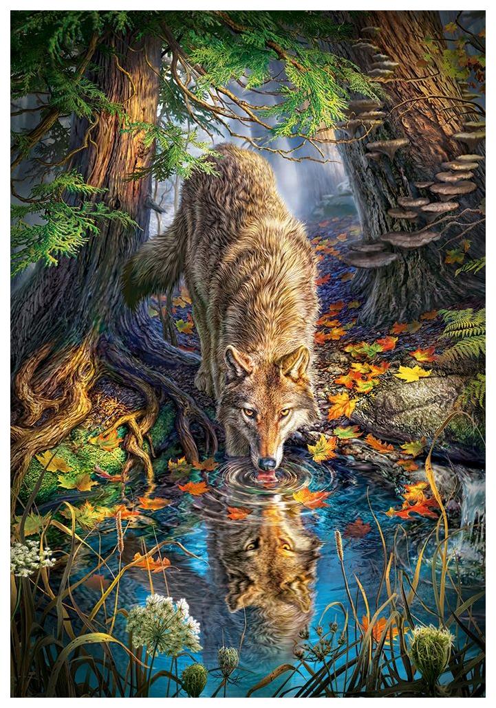 Купить Пазл Кастор Волк в дикой природе 1500 элементов C-151707, Пазлы
