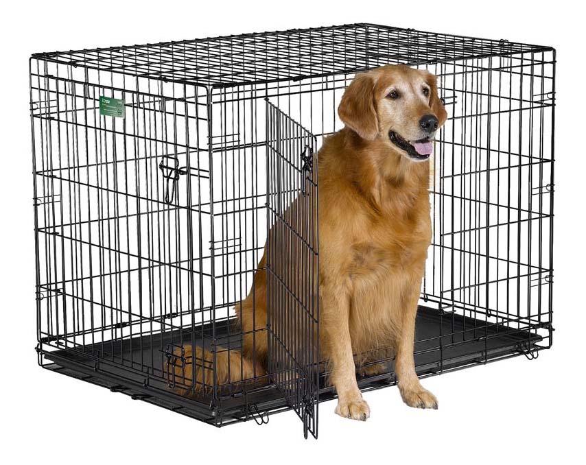 Клетка для собак iCrate 2 двери 1542DD 106х71х76hсм, черная фото