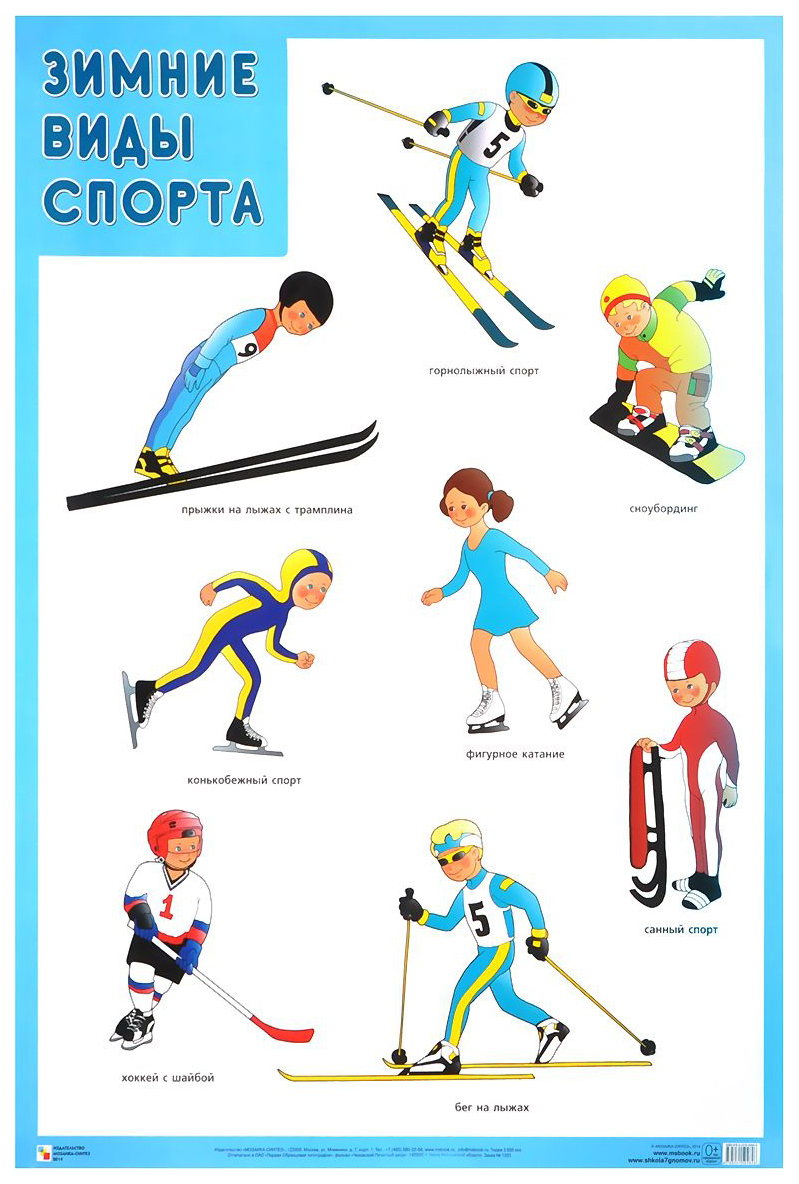Картинки виды спорта зимние и летние