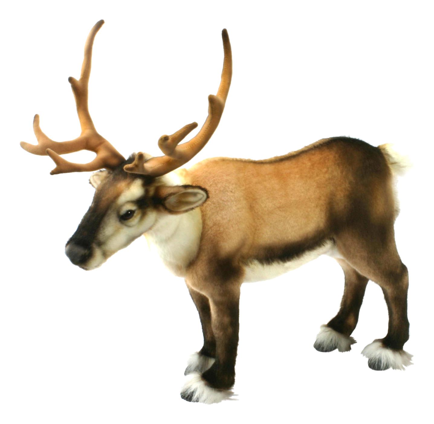 Купить Северный олень, Мягкая игрушка Hansa Олень Северный 50 см коричневый 4589, Мягкие игрушки животные