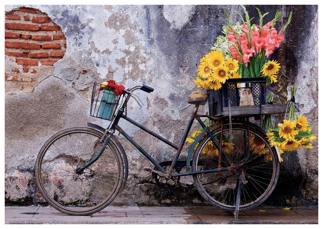 Купить Пазл Educa Велосипед с цветами 500 элементов, Пазлы
