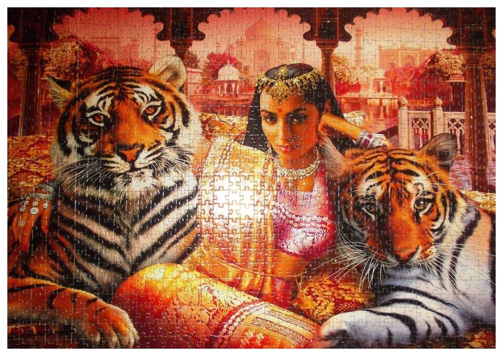 Купить Пазл Step Puzzle Золотая коллекция Принцесса Индии 79517 1000 элементов, Пазлы