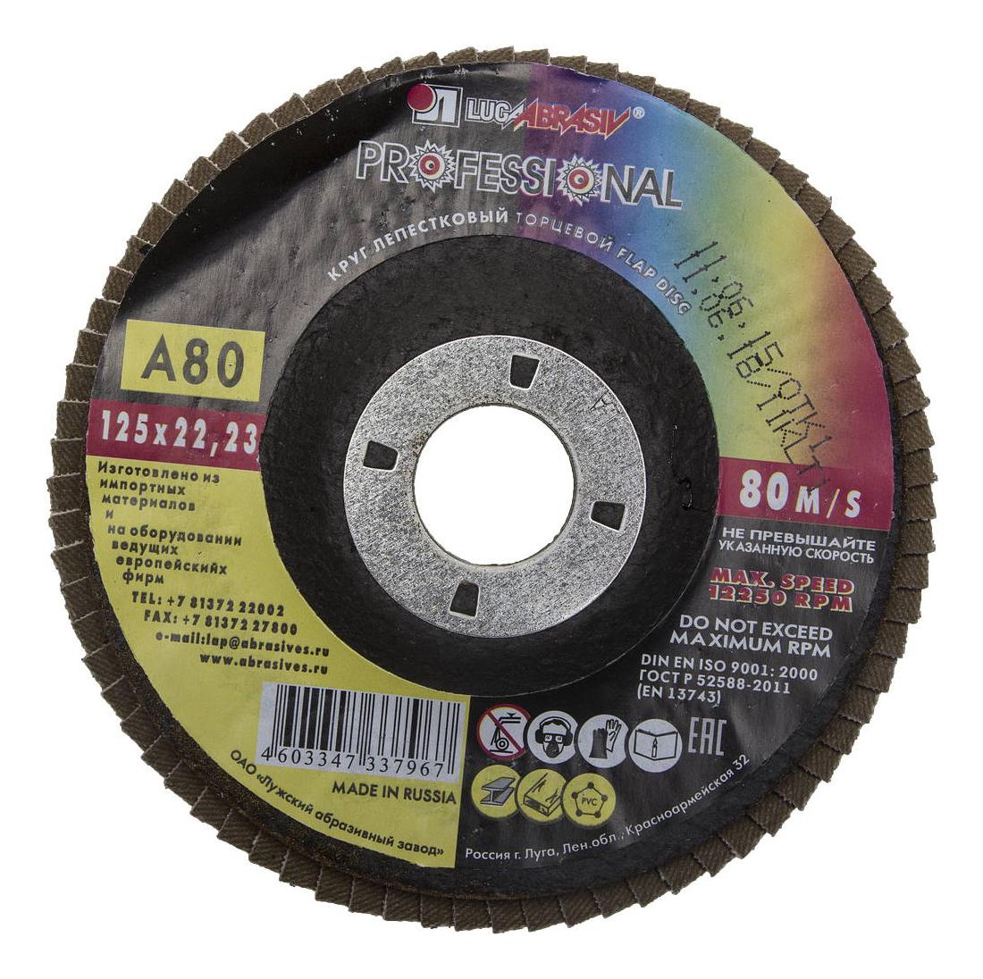 Диск лепестковый для угловых шлифмашин ЛУГА 3656-125-80 фото