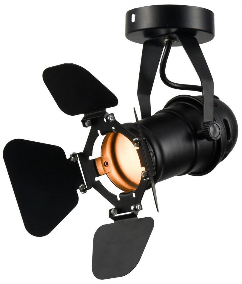 Потолочный светильник Lussole Loft Expression LSP-9838 фото