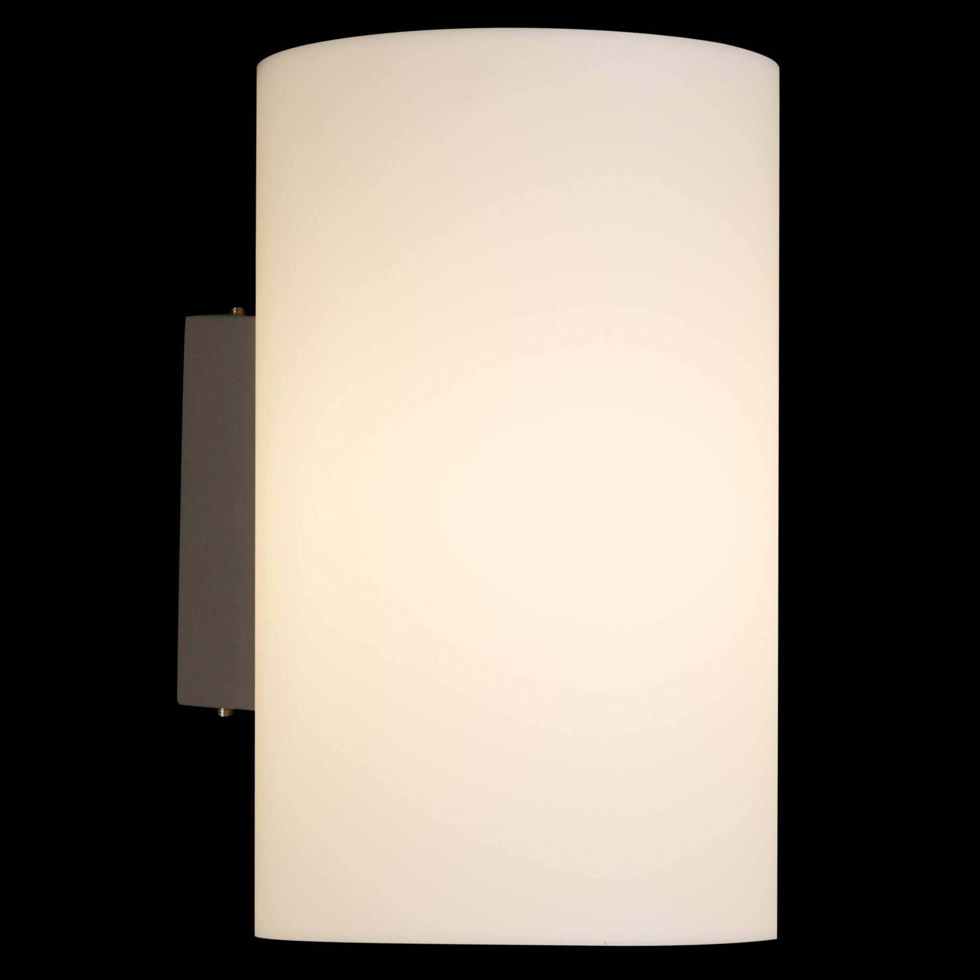 Настенный светильник Maytoni O008WL 01S