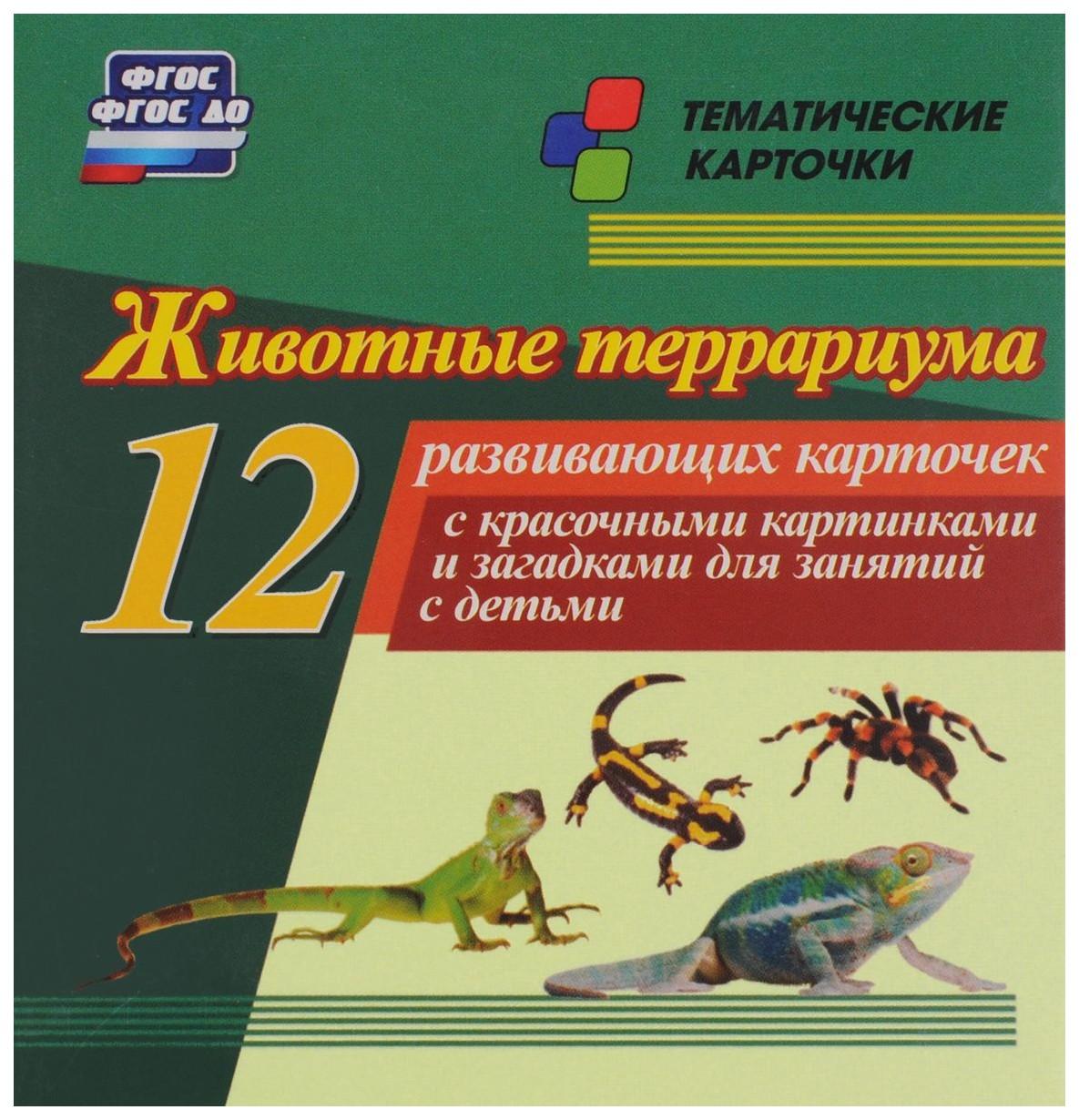 Купить Животные террариума: 12 развивающих карточек с красочными картинками и загадками для занят, Учитель, Подготовка к школе