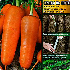 Семена Морковь МО (на ленте), 8