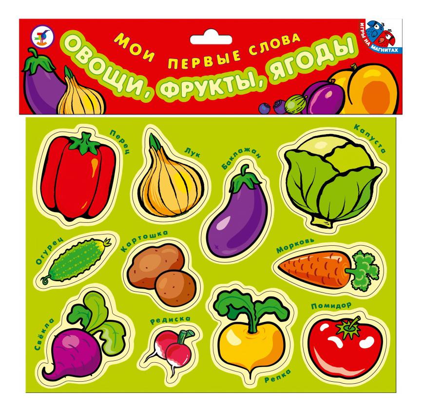Купить Набор магнитных карточек Овощи, фрукты, ягоды Дрофа Мои первые слова,