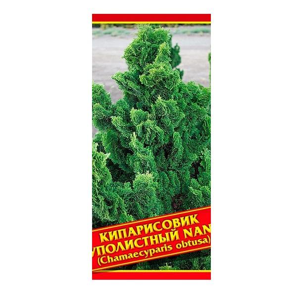 Семена Кипарисовик Туполистный «Nana», 0,2 г Симбиоз