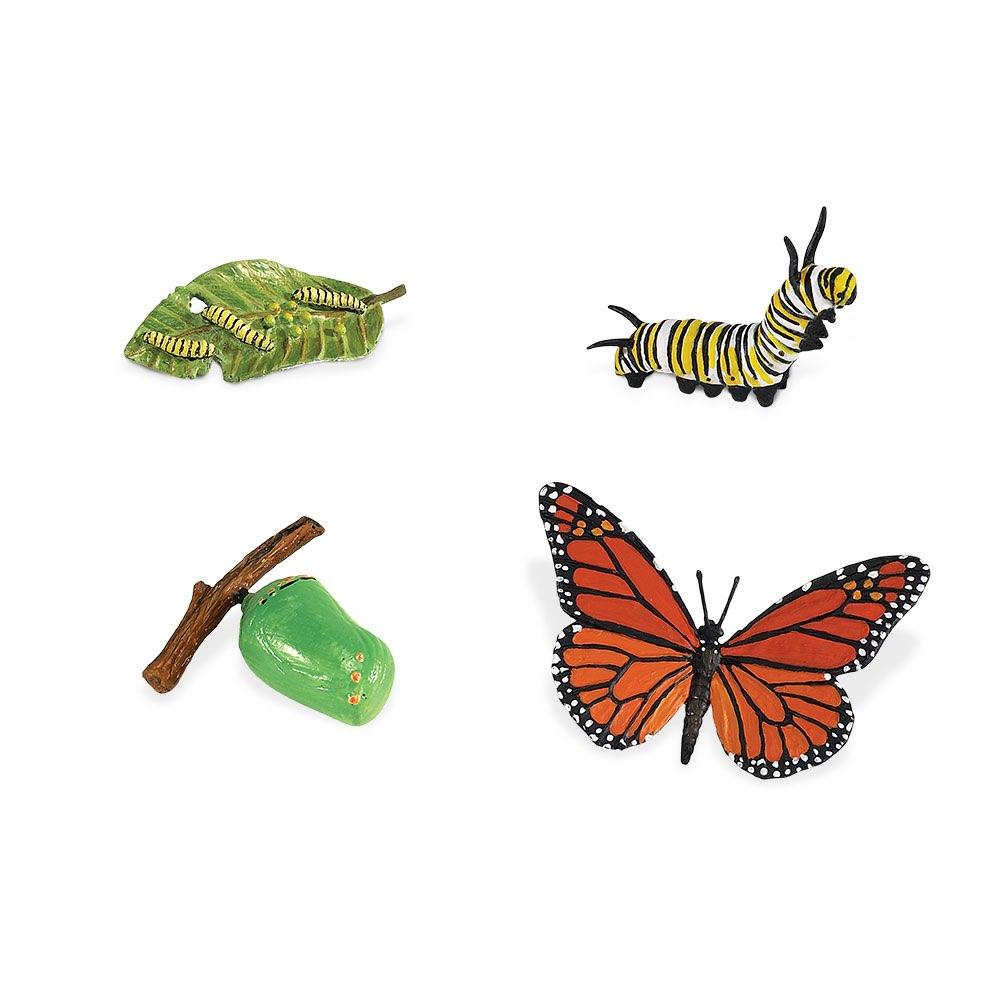 Набор фигурок Safari Ltd Жизненный цикл бабочки монарх