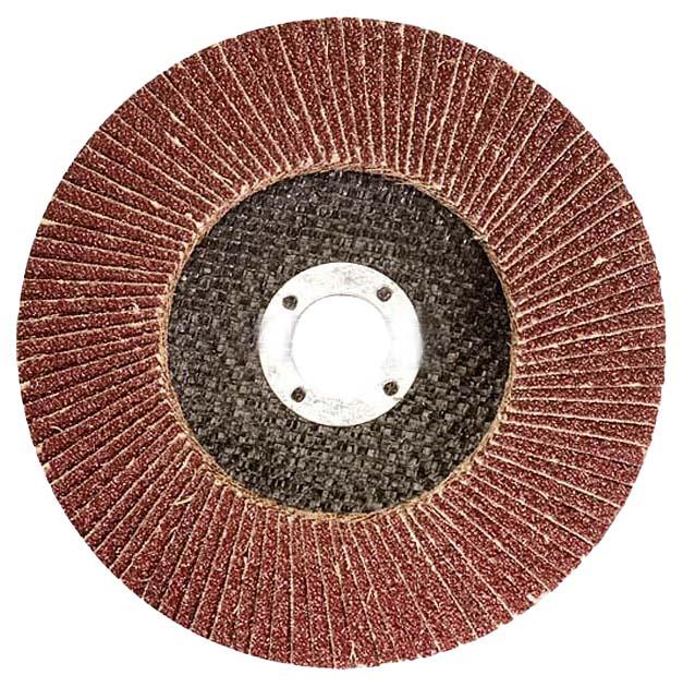 Диск лепестковый для угловых шлифмашин ЛУГА 3656-180-40 фото