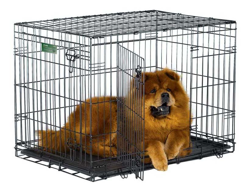 Клетка для собак iCrate 2 двери 1536DD 91х58х63hсм, черная фото