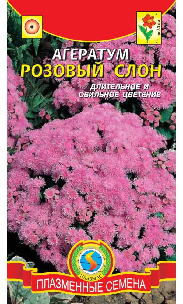Семена Агератум Розовый слон, 0,05 г Плазмас по цене 15