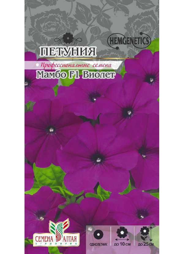 Семена Петуния карликовая Мамбо Виолет F1, 10 шт, Nemgenetics семена Семена Алтая фото