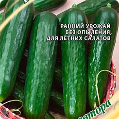Семена Огурец Дон Кихот F1, 10