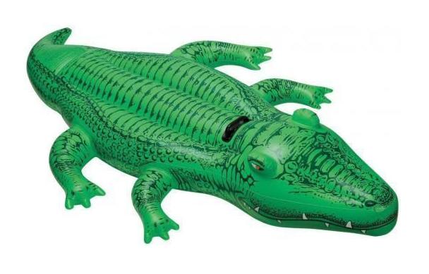 Купить Матрас надувной Intex Крокодил с держателями 168х86см с58546, Игры на воде