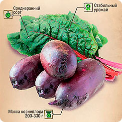 Семена Свекла Мона, 6 г, Тимирязевский питомник
