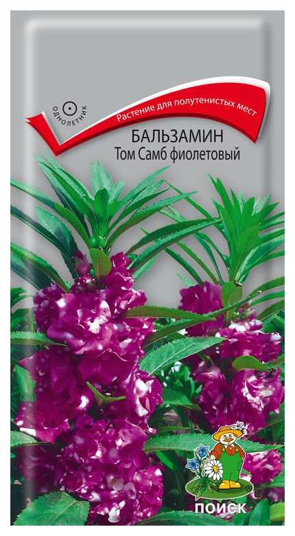 Семена Бальзамин Том Самб Фиолетовый, 0,1 г Поиск