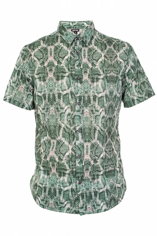 Рубашка мужская Just Cavalli 73153 зеленая 48 IT