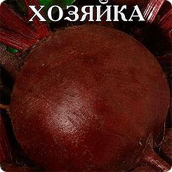Семена Свекла столовая Знатная хозяйка, 2 г, Артикул
