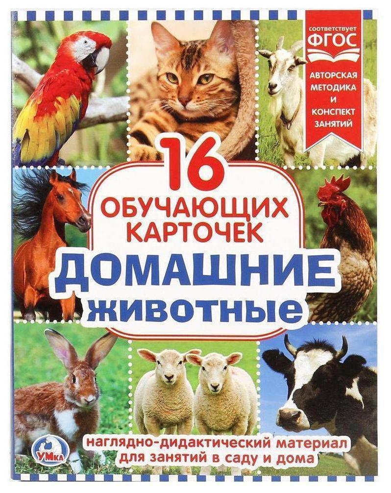 Карточки обучающие УМКА Домашние животные 16 шт.