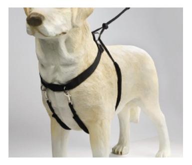 Шлейка для собак Beeztees нейлоновая, размер S