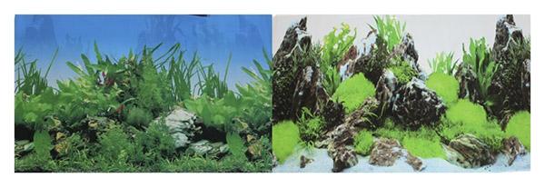 Фон для аквариума Prime Растительный/Скалы с растениями 30х60см фото