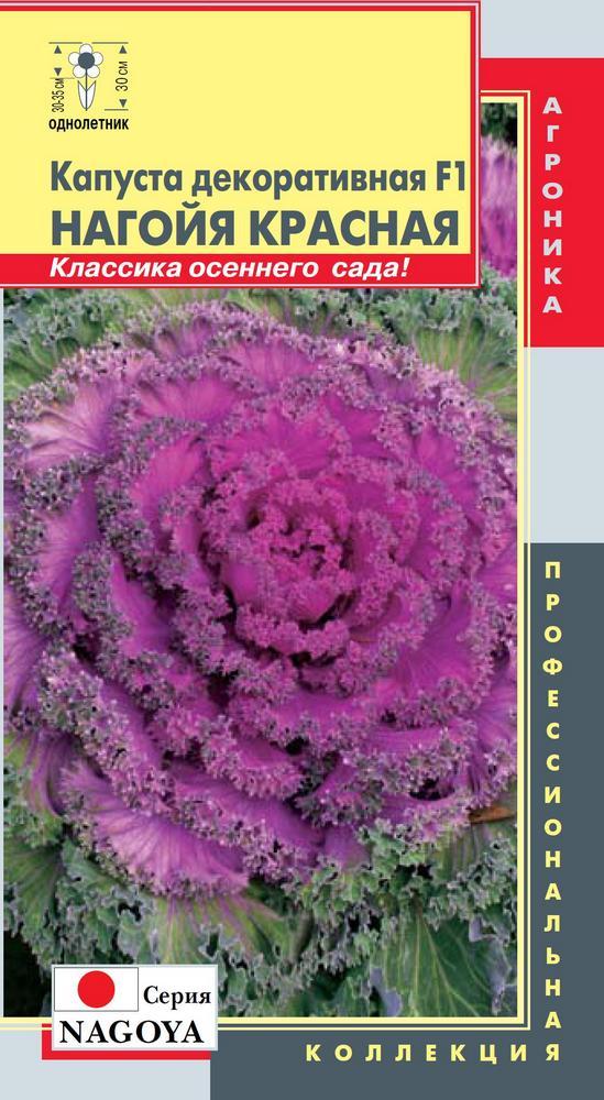 Семена Капуста декоративная Нагойя Красная, 5 шт, Плазмас 190043 по цене 36