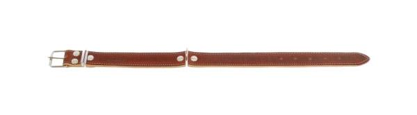 Ошейник для собак Аркон Премиум, кожаный, коньячный, 33-43 см x 20 мм фото