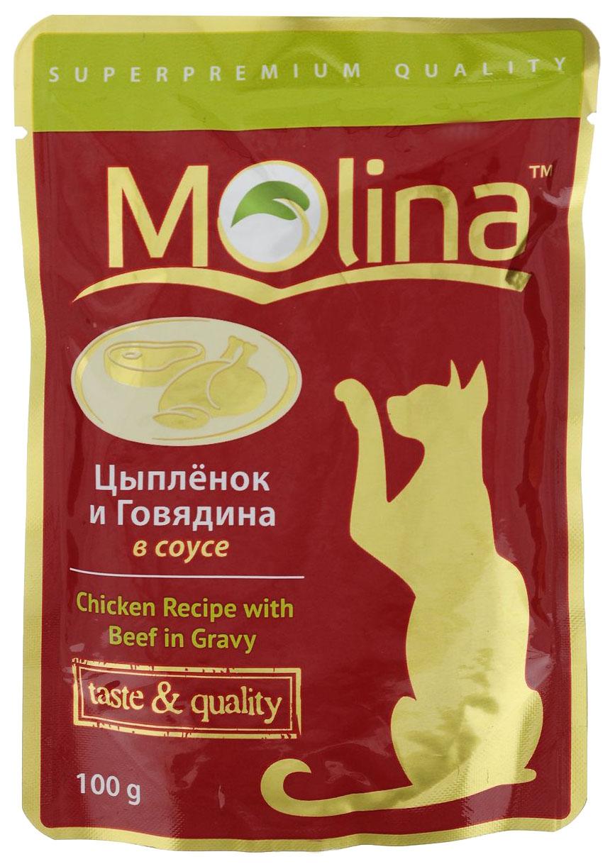 Влажный корм для кошек Molina, цыпленок, говядина, 100г