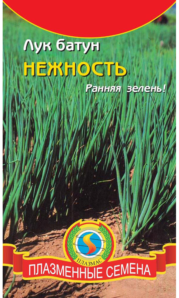 Семена Лук батун Нежность, 0,6 г, Плазмас