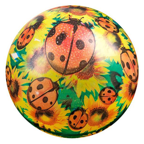 Мяч Shenzhen Jingyitian Божья коровка 22 см C20400